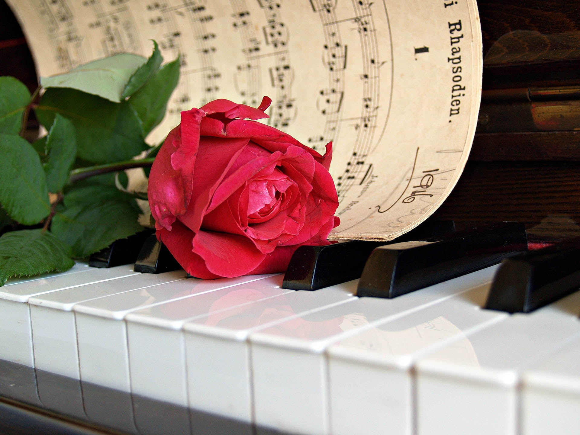 Piano flower barin multivenues reception halls events - 5
